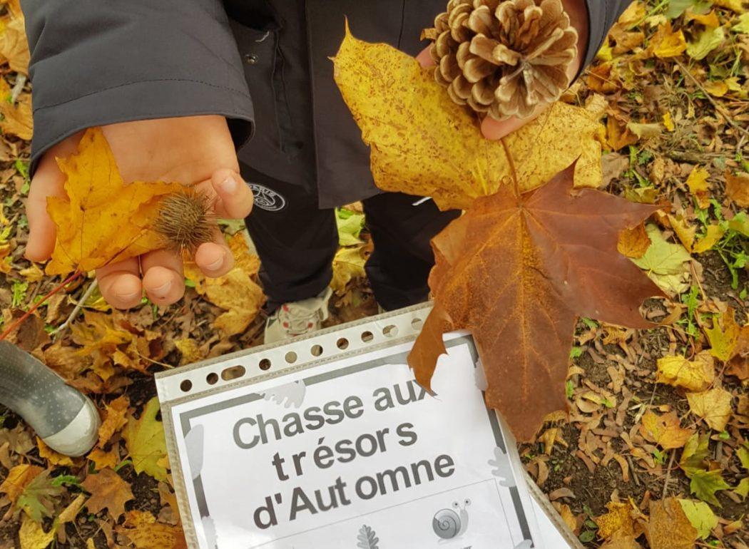 chasse aux trésors de l'automne